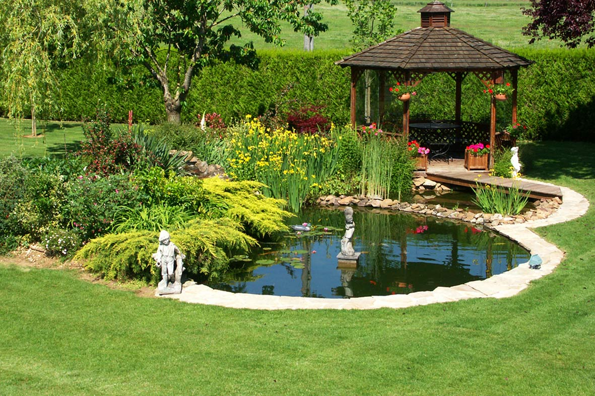 Le bassin de jardin for Bassin artificiel jardin